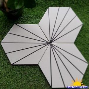 Gạch lục giác màu trắng kẻ sọc