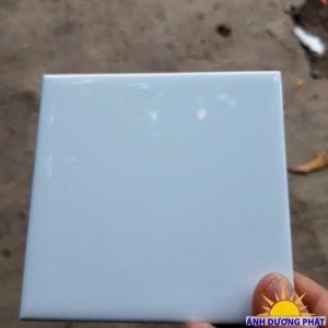 gạch thẻ trắng  100x100